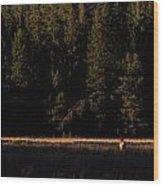 Border Crossing. Wood Print