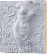 Born Again Wood Print by Elena Fattakova