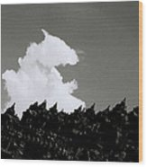 Borobudur Sky Cloud Wood Print