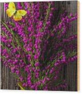 Boronia With Yellow Butterfly Wood Print