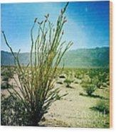 Borrego Desert Wood Print