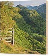 Borrowdale Valley - Lake District Wood Print