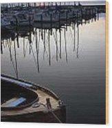 Borstahusen Landskrona Se 110 Wood Print