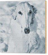 Borzoi Russian Hound Portrait Wood Print by Christian Lagereek