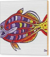 Boseman's Rainbowfish Wood Print