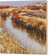 Bosque Canal Wood Print