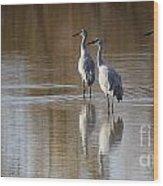 Bosque Del Apache Cranes Wood Print