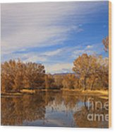 Bosque Del Apache Reflections Wood Print