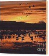 Bosque Del Apache Sunrise 1 Wood Print
