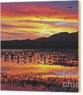 Bosque Sunset II Wood Print