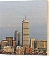 Boston Back Bay With The Prudential Tower Wood Print