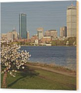Boston Charles River On A Spring Day Wood Print