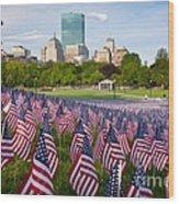 Boston Common Flags Wood Print