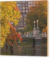 Boston Public Garden Lagoon Bridge Wood Print