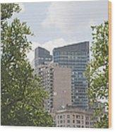 Boston Skyline Among The Trees Wood Print