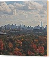 Boston Skyline View From Mt Auburn Cemetery Wood Print