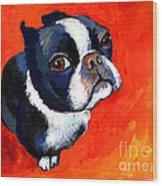 Boston Terrier Dog Painting Prints Wood Print