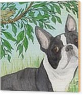 Boston Terrier Dog Tree Frog Cathy Peek Art Wood Print