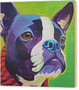 Boston Terrier - Ridley Wood Print by Alicia VanNoy Call