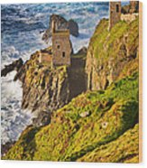 Botallack Wood Print by Louise Heusinkveld