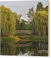 Botanic Garden Bridge At Dusk Wood Print