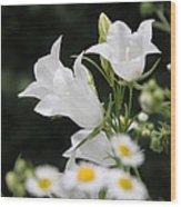 Botanical Beauty In White Wood Print