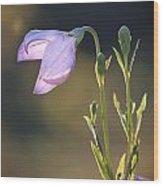 Botanical Purple Iris Wood Print
