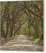 Botany Bay Road On Edisto Island Wood Print