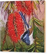 Bottle Brush And Wren Wood Print