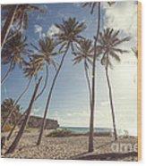 Bottom Bay Tropical Beach In Barbados Caribbean Wood Print