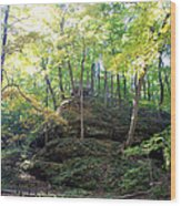 Bottom Of Devil's Punchbowl Wildcat Den Wood Print
