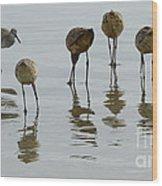 Shorebirds 1 Wood Print