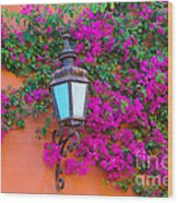 Bougainvillea And Lamp, Mexico Wood Print