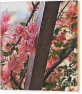 Bougainvillea On Trellis Wood Print