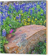 Boulder And Bluebonnets Wood Print
