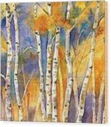 Boulder Aspens Wood Print