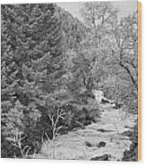 Boulder Creek Winter Wonderland Black And White Wood Print