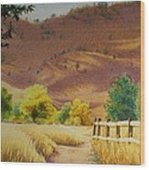 Boulder Foothills In Autumn Wood Print