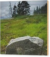 Boulder On The Shore At The Mount Desert Narrows In Maine Wood Print
