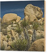 Boulders In The Joshua Tree National Park Wood Print