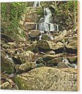 Boulders Logs And Lower Laurel Falls Wood Print