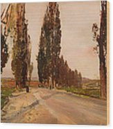 Boulevard Of Poplars Near Plankenberg Wood Print