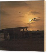 Bouncing Betty Beached Wood Print