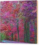 Bountiful Color Wood Print