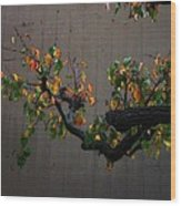 Bouquet From Autumn Leaves.three. Wood Print