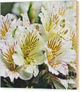 Bouquet Of Alstroemeria Wood Print