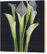 Bouquet of Callas Wood Print