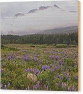 Bouquet Of Glacier Wood Print