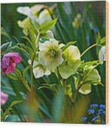 Bouquet Of Lenten Roses Wood Print