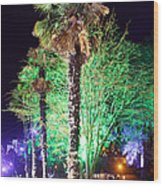 Bournemouth Winter Gardens At Night Wood Print